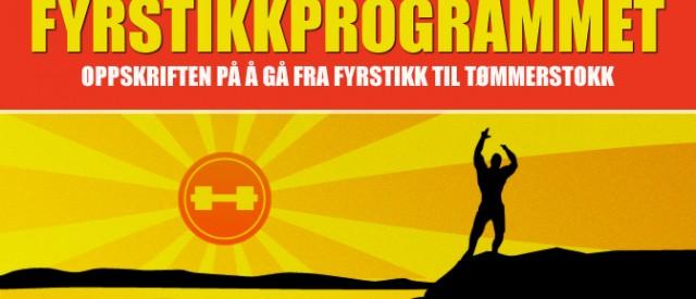 Fyrstikkprogrammet – Oppskriften på å gå fra fyrstikk til tømmerstokk