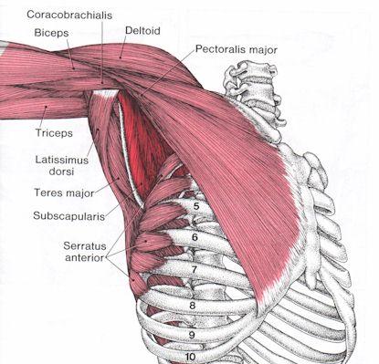 smerter i skulder og overarm