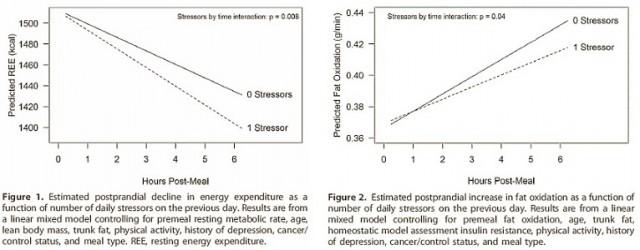 stressfatoxidation