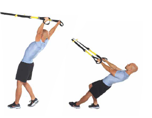 trx-y-deltoid-fly