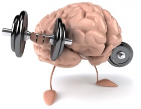 education-brain-as-a-muscle_68644981-280x218