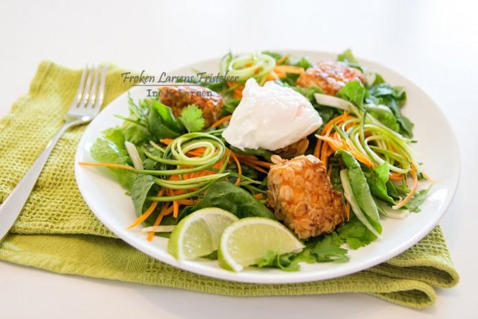Havrestekt laks spinatsalat, posjert egg og smaker av asia-2 - CFLF (2)