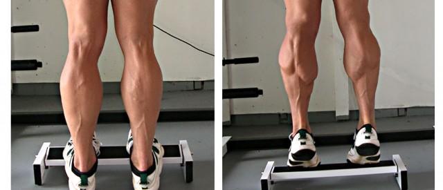 Derfor vokser ikke leggmusklene dine!