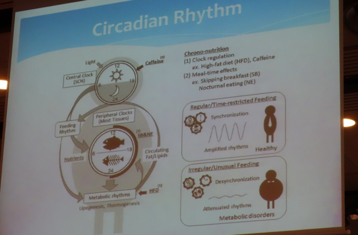 circ-rythm-sync